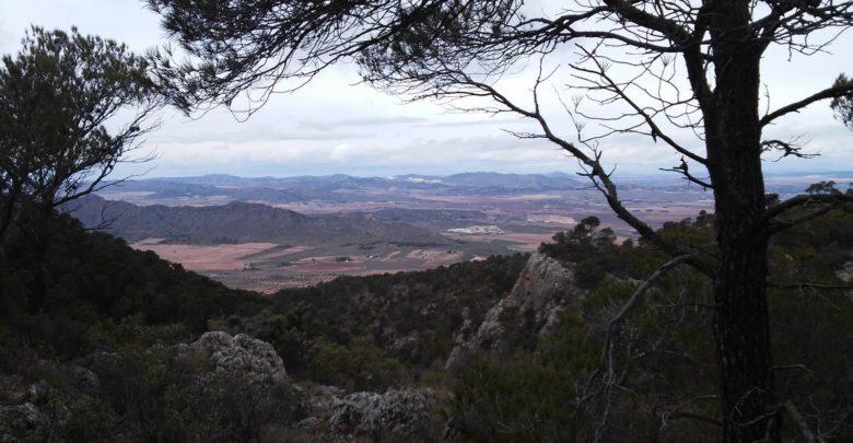 Sierra Salinas