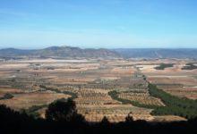 Valle de los Alhorines